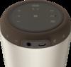 Sony LSPX-S2 wireless speaker