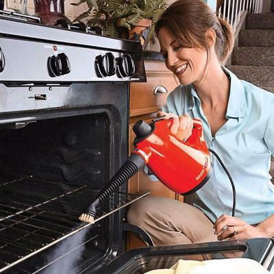 Haan HS20R Vacuum Cleaner
