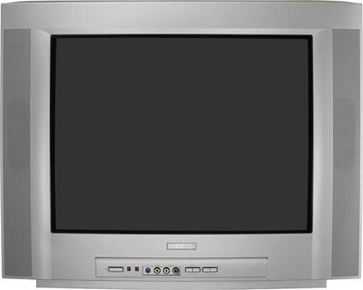 Philips 21PT4205 Fernseher