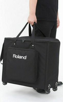 Roland Cube Street EX PA Pack Guitar Amplifier