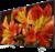 Sony KD-43XF8596