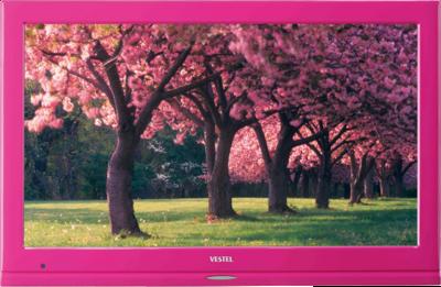 Vestel 22FA5100P Telewizor