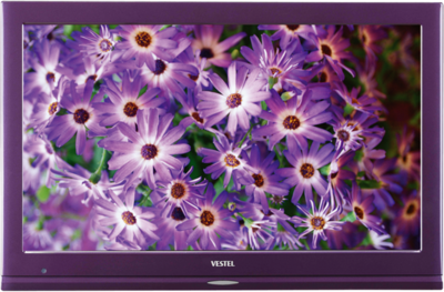 Vestel 22FA5100L Telewizor