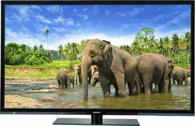 Medion Life P16111 Telewizor