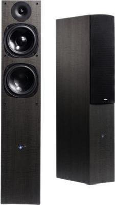 Audio Pro Evo 60