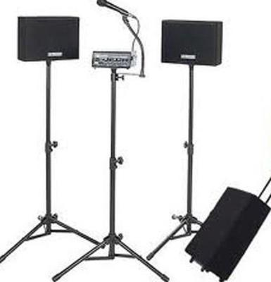 AmpliVox SW230A Loudspeaker