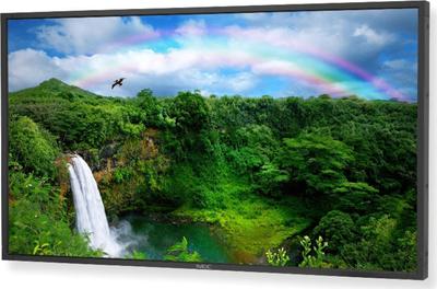 NEC MultiSync P461 TV