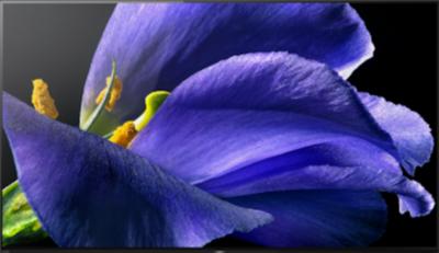 Sony KD-77AG9 TV