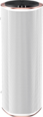 Creative Omni Wireless Speaker