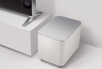 Sony SWF-BR100 Subwoofer