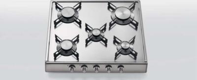 ALPES-INOX R 60/5G