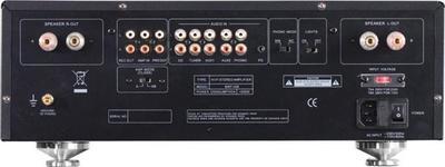Advance Acoustic MAP-306