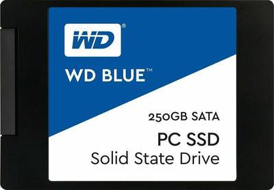WD Blue PC SSD WDS250G1B0A