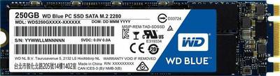 WD Blue PC SSD WDS250G1B0B