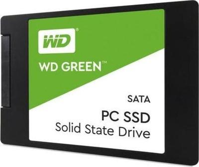 WD Green SSD WDS100T2G0A