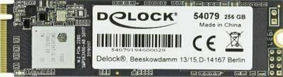 DeLock M.2 SSD 256 GB