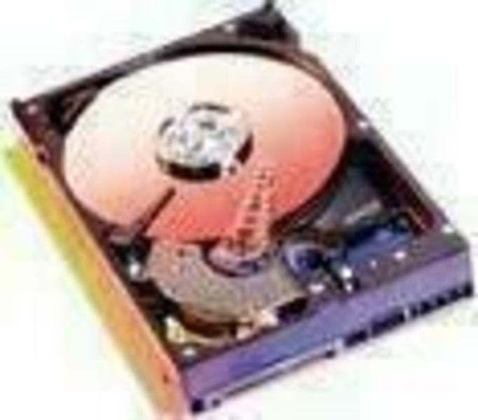 WD Blue WD2000JD 200 GB