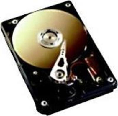 Fujitsu S26361-F3272-L250 Festplatte