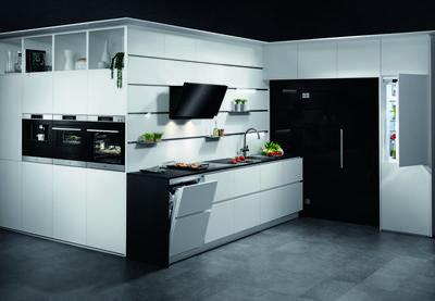 AEG FSE62800P Dishwasher
