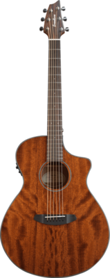 Breedlove Discovery Concert (CE) Acoustic Guitar