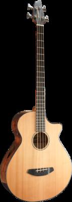 Breedlove Acoustic Bass Guitare acoustique