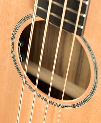 Breedlove Acoustic Bass
