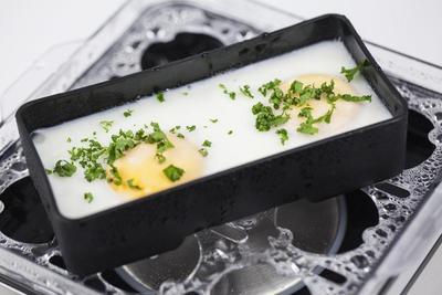 Caso E9 Egg Boiler