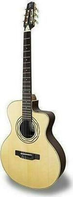 APC Instruments EA Luthier CROS CW Acoustic Guitar