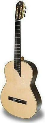 APC Instruments MX Luthier