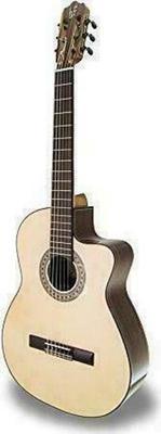 APC Instruments Classical 8S CW Acoustic Guitar