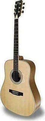 APC Instruments WG 100 Acoustic Guitar