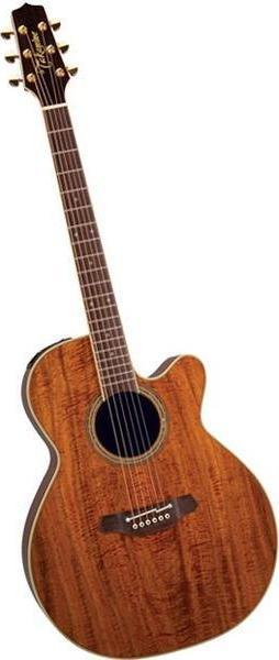 Takamine Noveau & Santa Fe EF508KC acoustic guitar