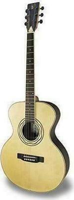 APC Instruments EA Luthier Acoustic Guitar