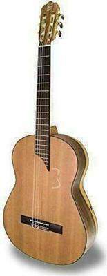 APC Instruments MX 8 Acoustic Guitar