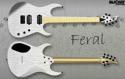 BlacKat Guitars Feral D6