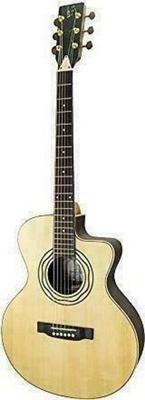 APC Instruments EA Luthier CW