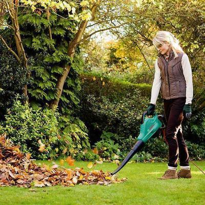 Bosch ALS 30 leaf blower