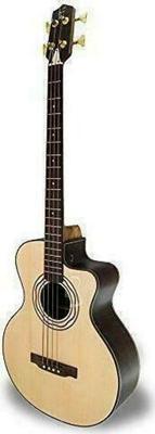 APC Instruments Bass 604 CW Acoustic Guitar