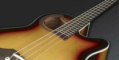 Warwick Alien Standard 4 (CE) Acoustic Bass Guitar