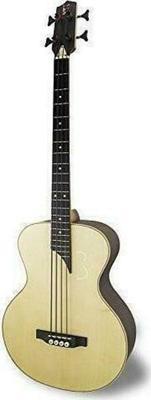 APC Instruments Bass 604 Acoustic Guitar