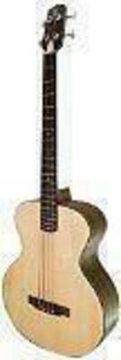APC Instruments Bass 603 Acoustic Guitar