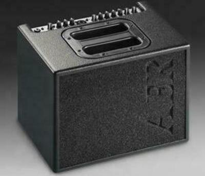 AER Compact 60/3 Guitar Amplifier