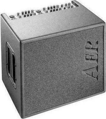 AER Acoustic Standard Domino 2 Guitar Amplifier