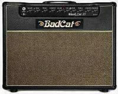 Bad Cat Black 15