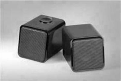 Cabstone Soundtwins USB