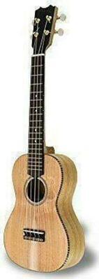 APC Instruments UKU CT Ukulele