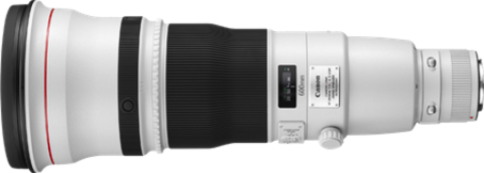 Canon EF 600mm f/4.0L IS II USM Lens