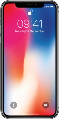 Apple iPhone X Mobile Phone