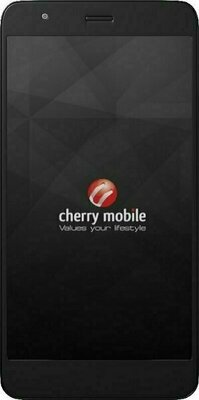Cherry Mobile Flare X 2GB