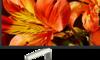 Sony KD-65XF8505